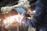COVID-19 | Plan de soutien aux entreprises technologiques